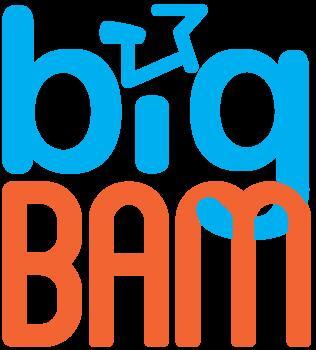 Big BAM